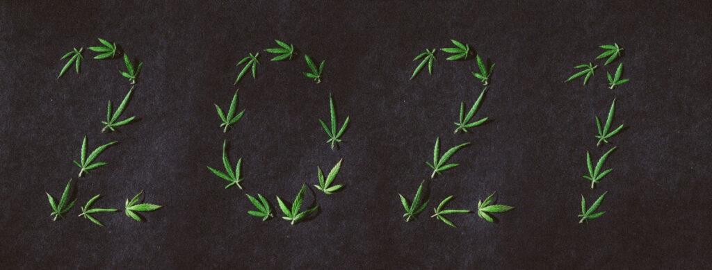 legalizacja marihuany w 2021 roku w Polsce projekt ustawy inicjatywa konopna